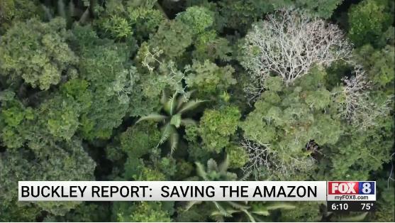 Photo: Amazonian Landscape